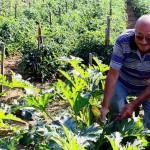 Agriturismo Nonno Tobia