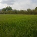Agriturismo Tre Santi