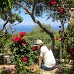 Il giardino dell'arte – Guest House